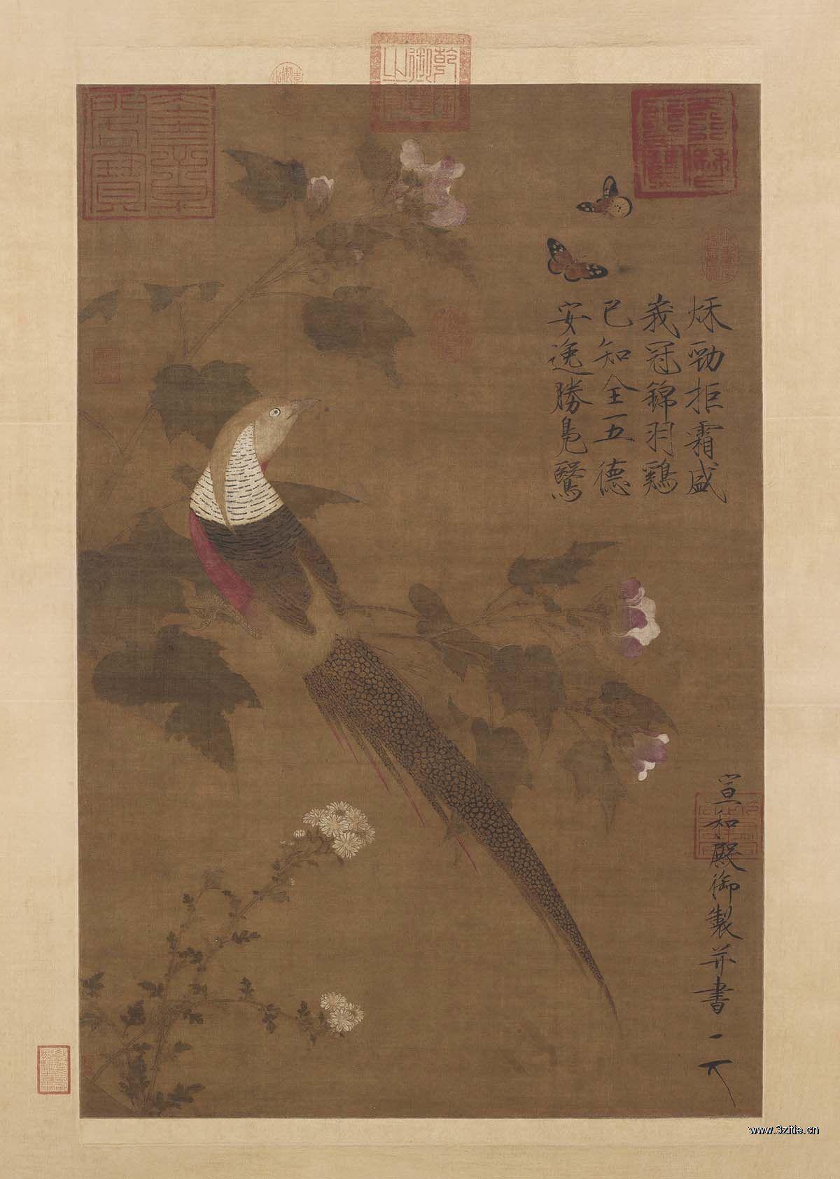 宋徽宗赵佶 芙蓉锦鸡图绢本81.5x53.6