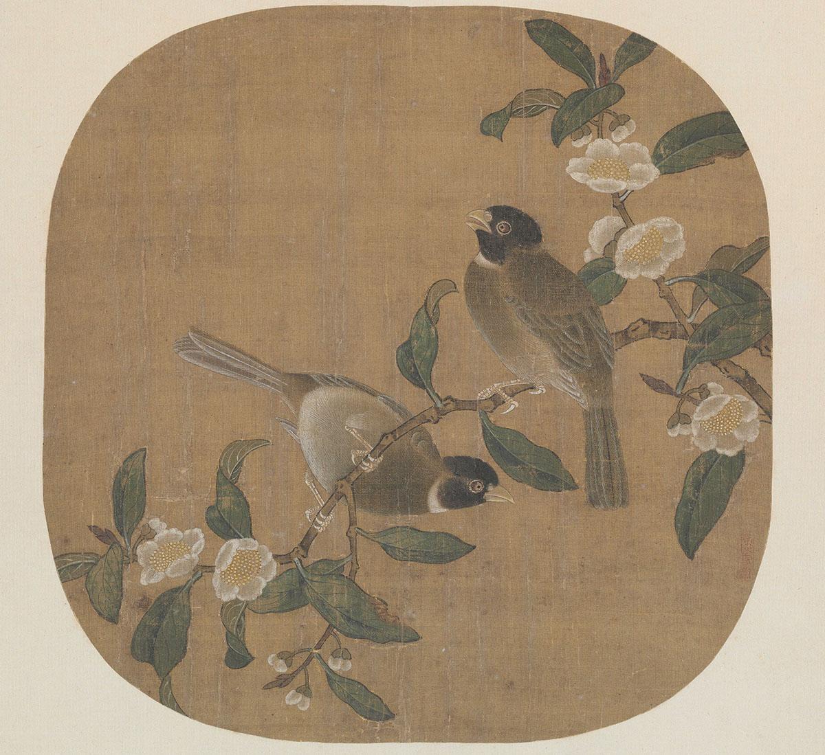 明 佚名 花卉双禽图页39x43故宫博物院
