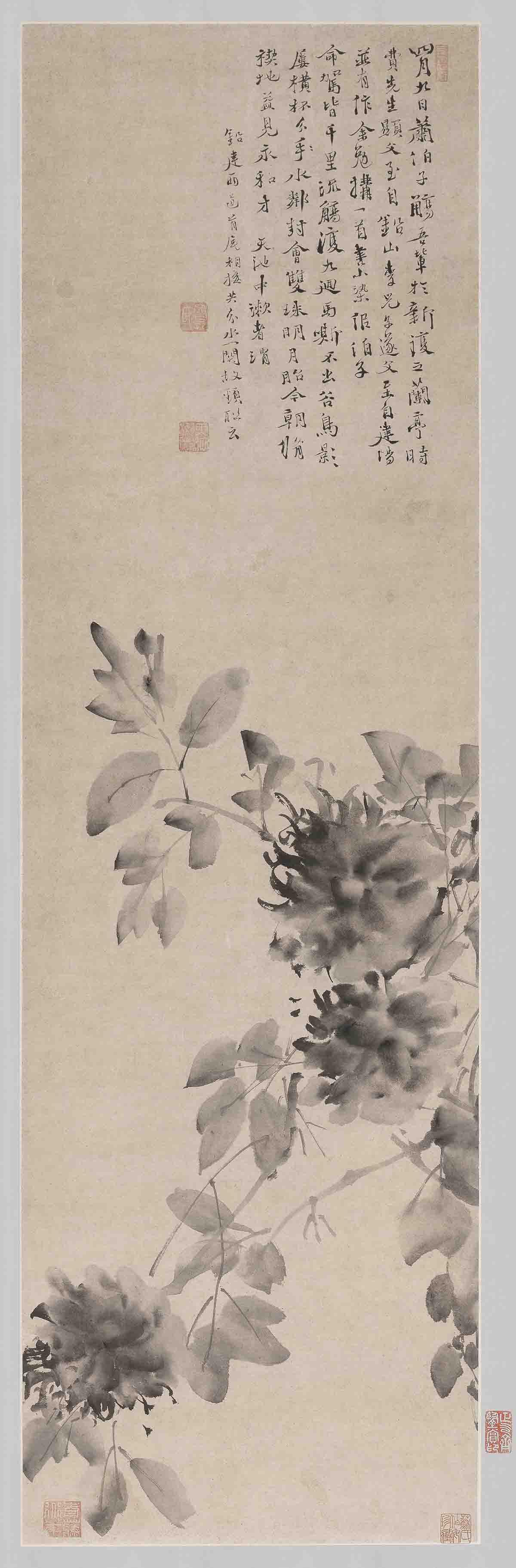 明 徐渭 水墨牡丹图轴纸本109.2x33