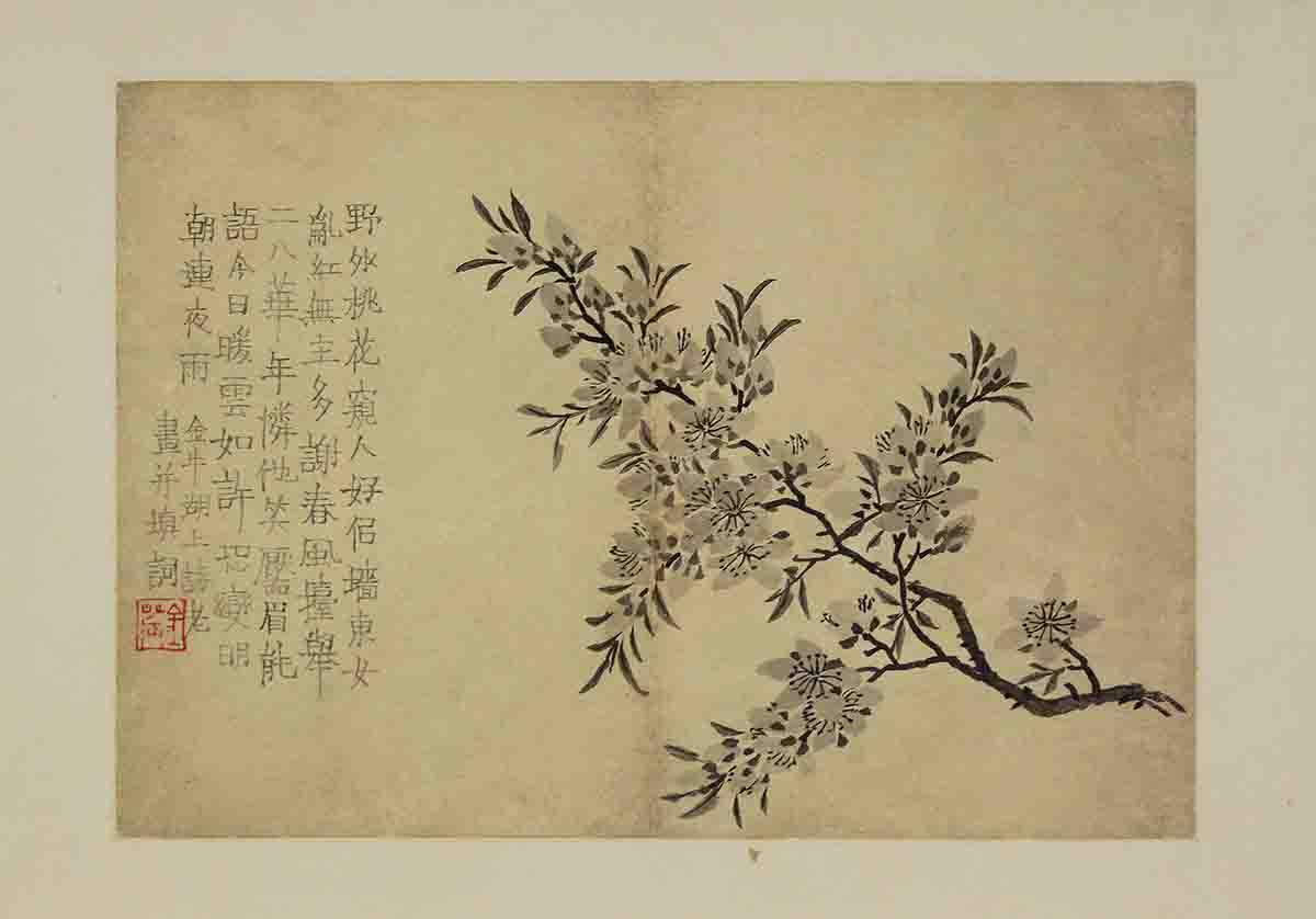 清 金农 花卉图册 浙江省博物馆