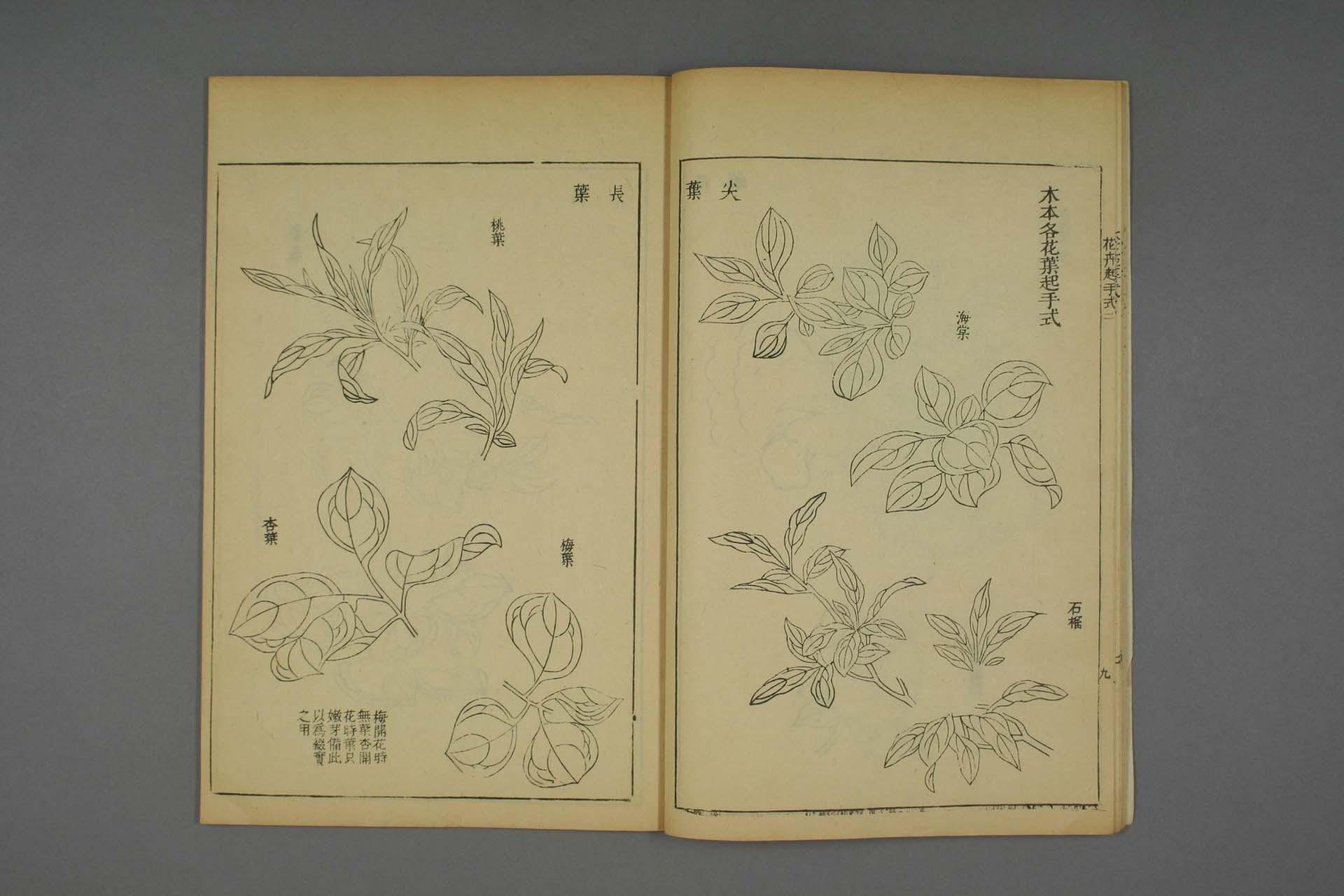 芥子园画谱 康熙刻本全集-刻本-16