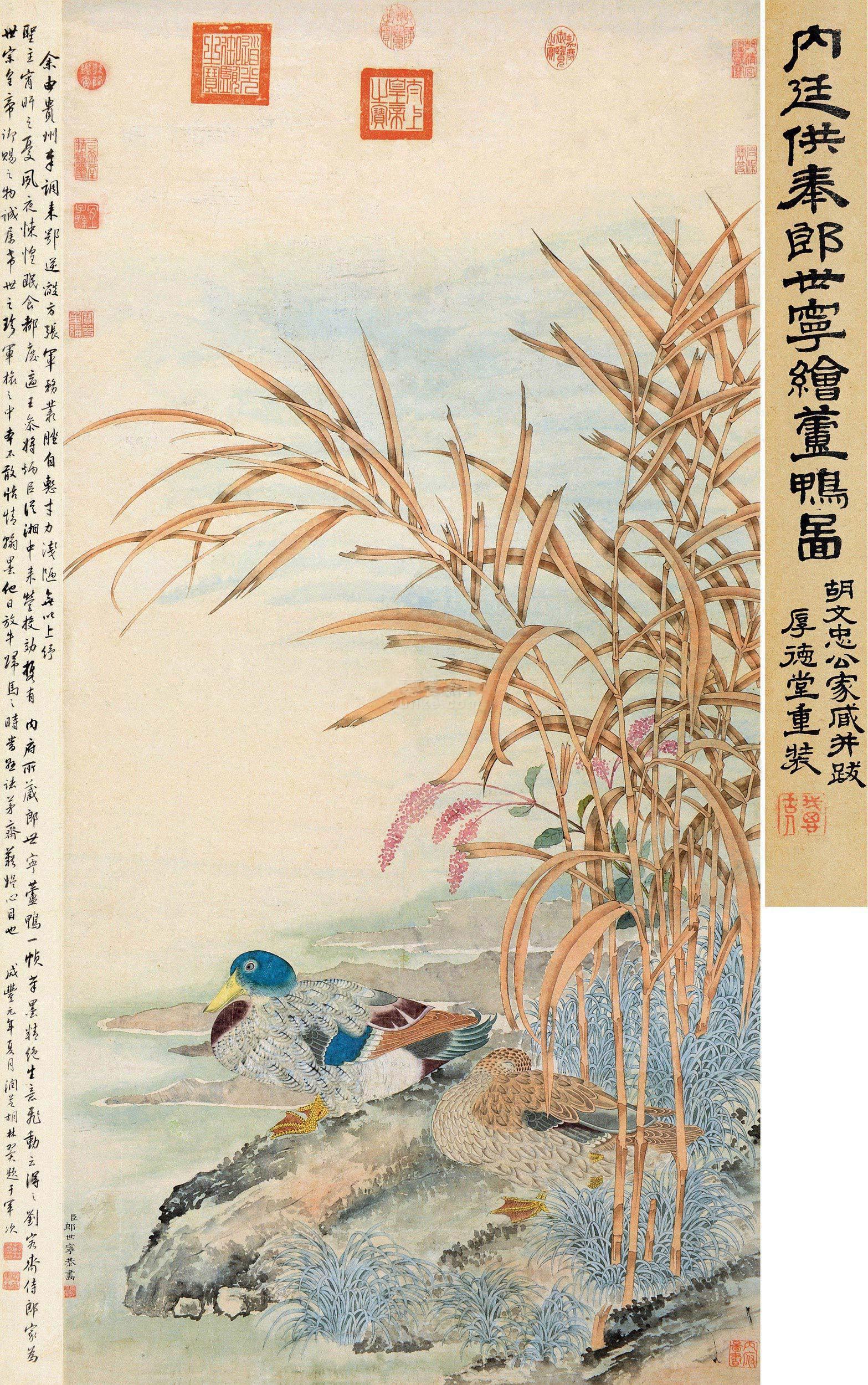 郎世宁 芦鸭图 立轴 设色纸本作品欣赏