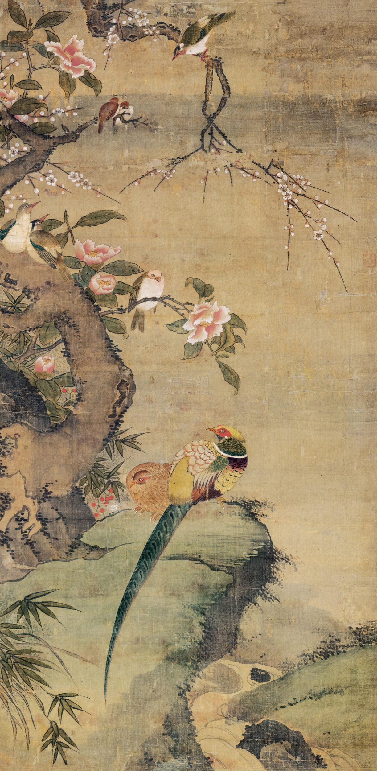 佚名 芙蓉锦鸡 立轴 设色绢本作品欣赏