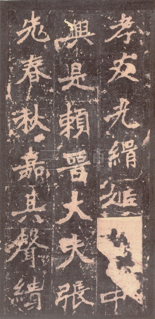 北魏 张猛龙碑之一(二玄社原色法帖)0007作品欣赏