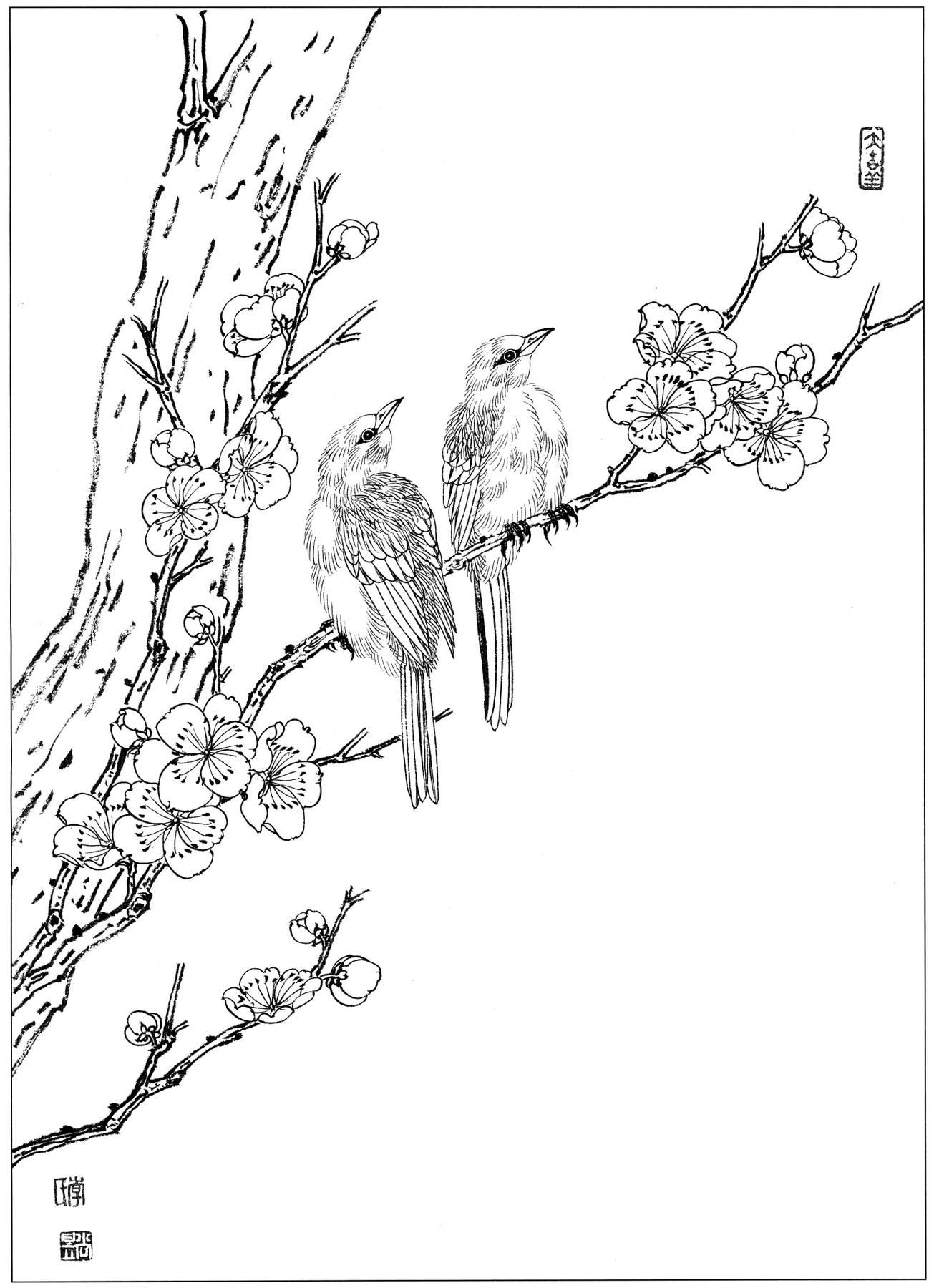 []0085_工笔画花鸟白描线稿素材高清图黑腰梅花雀_0x0px_jpg_600dpi_3